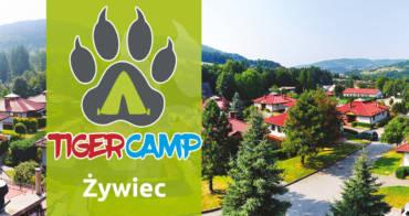 TIGER CAMP 2017 / 1 turnus / ŻYWIEC / szczegóły wyjazdu…